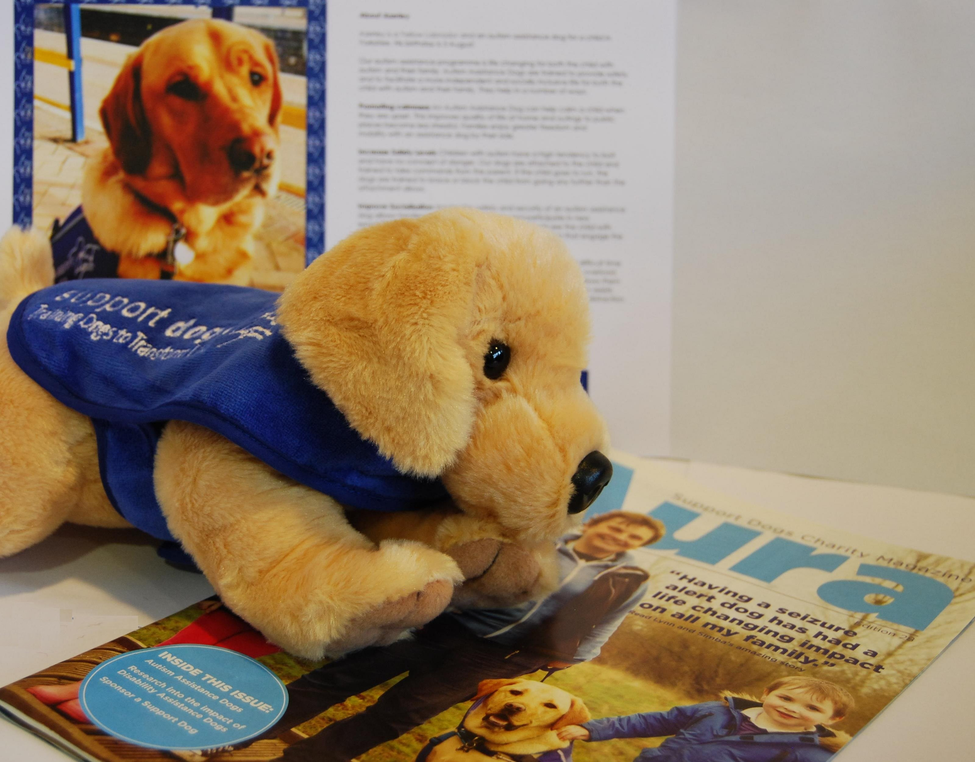 sponsor a support dog welcome pack
