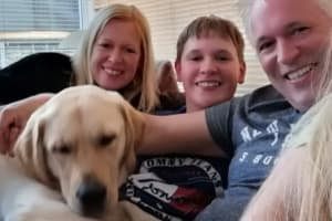Charity seeks 'family foster carers' to help its life-saving pooches adapt to working with children.