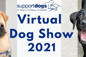 Our virtual dog show is back!