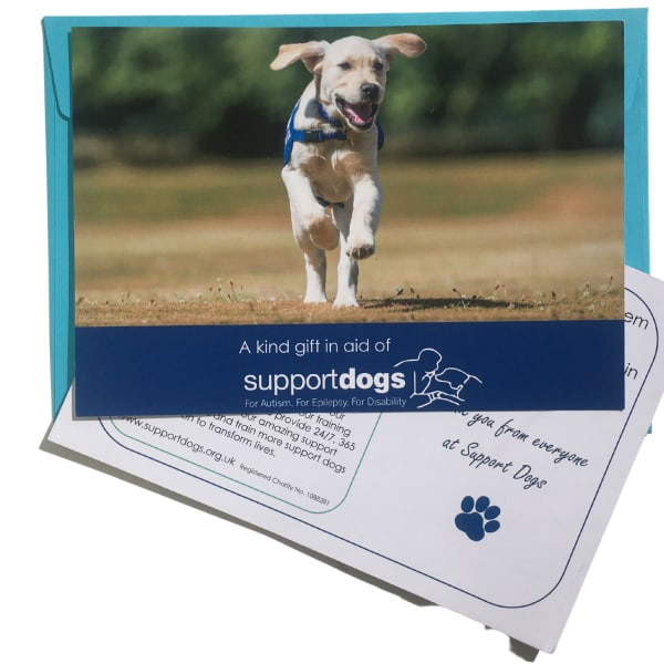 Doggy play time - a charity gift card