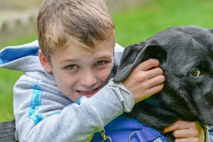 Willow the autism assistance dog supporting Sam through the Covid-19 emergency